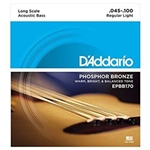 D'Addario Acoustic Bass Phosphor Bronze String Set; EPBB170